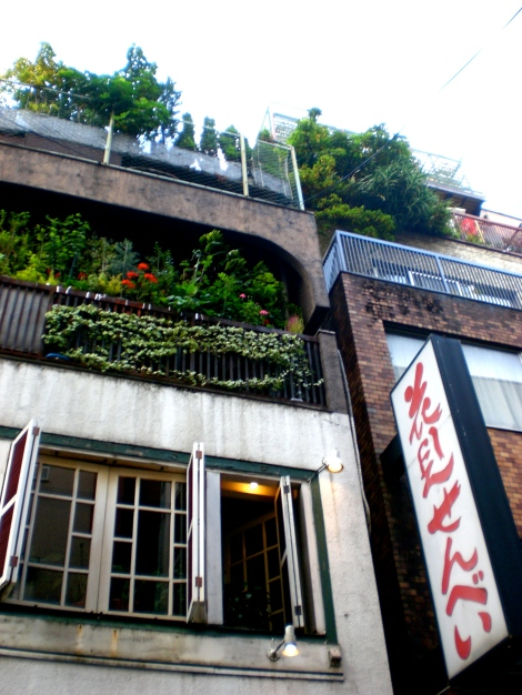 I want a rooftop garden..