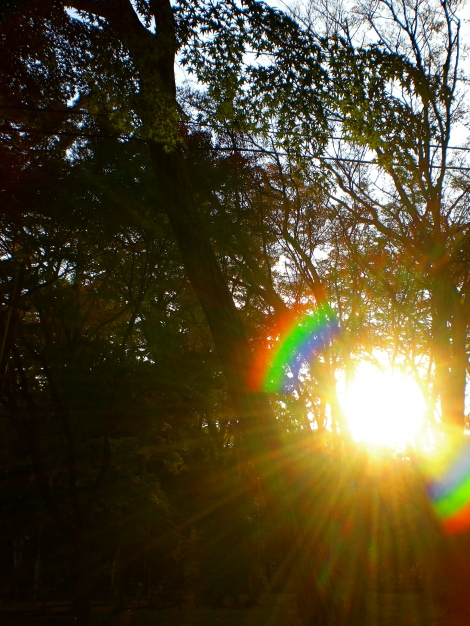 i love catching the sun