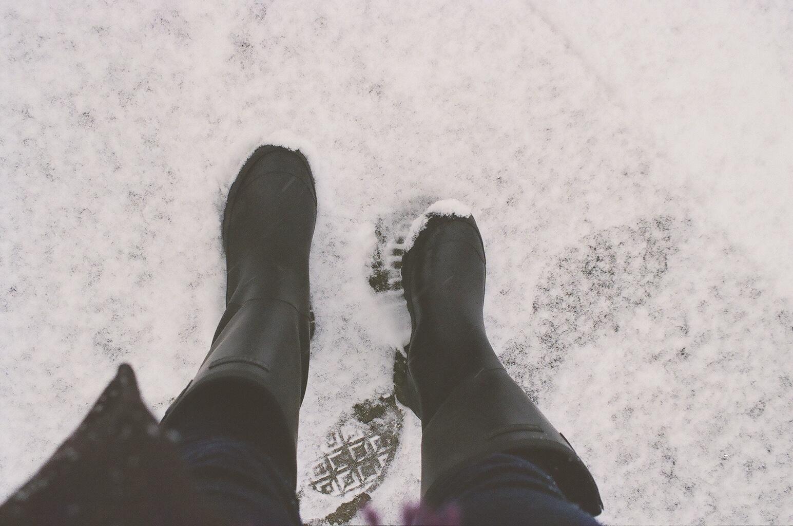 Snow Days Ii